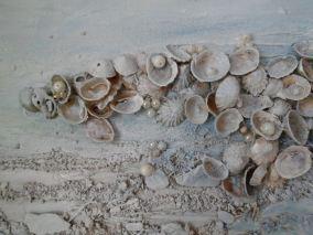 Seascape artist